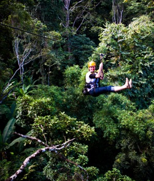 Zip-lining through the forests surrounding Chang Mai.