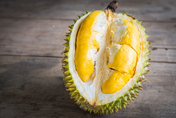 Durians tend to be both simultaneously revered and feared in South-East Asia. Go there, and you're likely to see signs ...