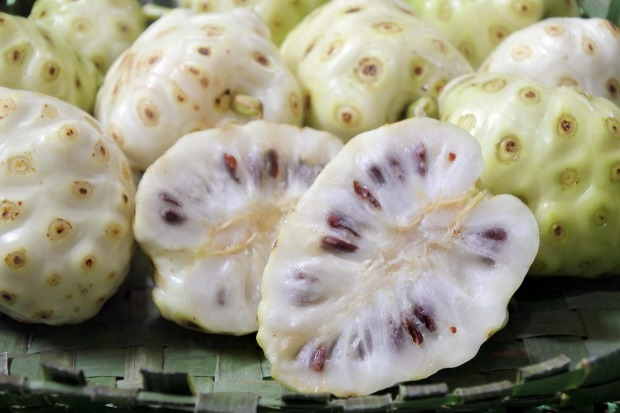 Noni: The health food industry has taken to the noni – a bobbly greenish-white fruit that grows in South East Asia and ...
