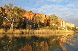 Natural beauty: The striking landscape beside the River Murray.