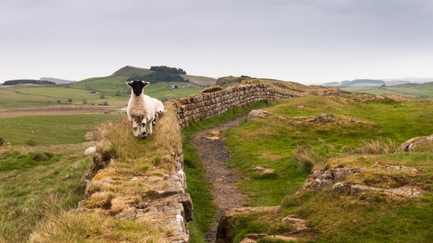 HADRIAN'S WALL When the Romans gave up conquering all of Britain they build a 122-kilometre defensive wall from sea to ...