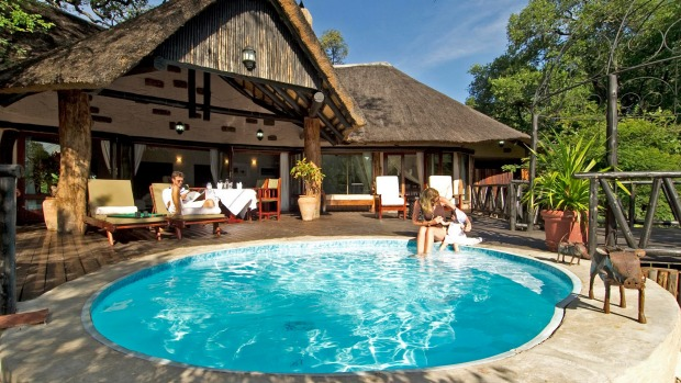 Sanctuary Sussi & Chuma features 12 luxury treehouses on the banks of the Zambezi.
