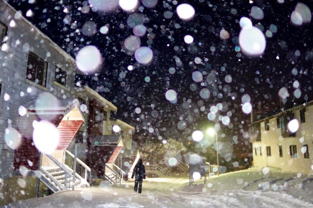The Icy blast in Victoria has continued overnight with up to 20cm of snow falling at Mt Hotham. Temperatures dipped to ...