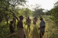 Hadza hunters with bows and arrows tracking game.