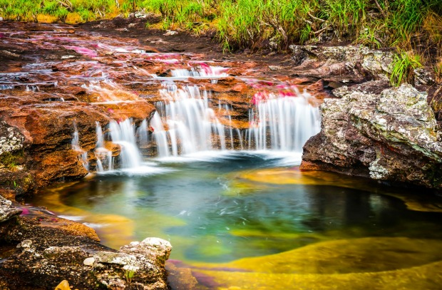 Cano Cristales river in Colombia.
