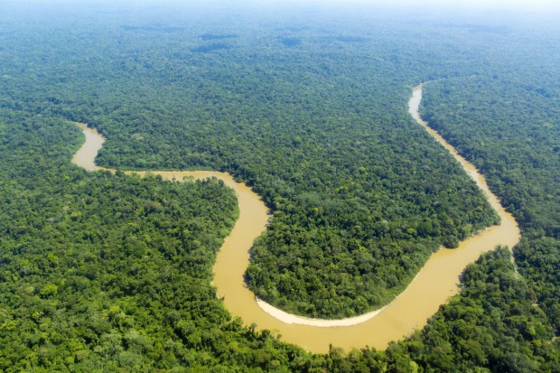 THE AMAZON The superlatives alone are mind-boggling. The Amazon Basin covers an area almost the size of Australia, with ...