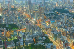 The Tokyo megalopolis is overwhelming from above but the beauty is in the small corners and hidden places.