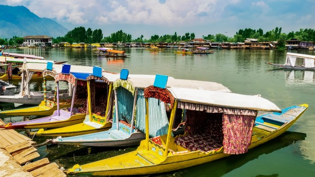 Shikara boats in Dal Lake.