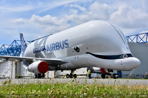 Airbus unveils its new Beluga freighter aircraft, the BelugaXL, with whale livery.