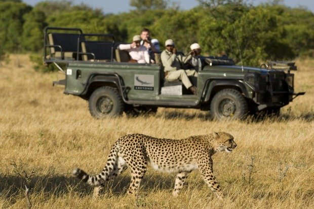 GO WILD IN SOUTH AFRICA: A safari is one of travel's ultimate experiences. Bordering the St Lucia wetlands of ...