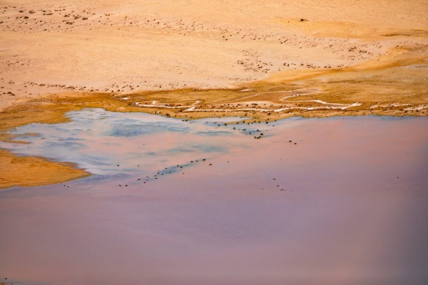 A bird's eye view of Australia's Lake Eyre is in flood. South Australia's outback has been transformed into a ...