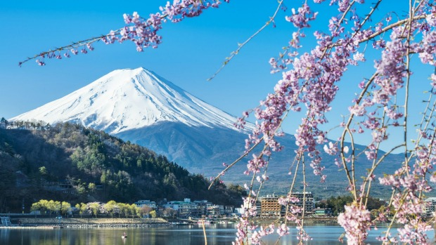 Mt Fuji, Japan during Cherry Blossom season.