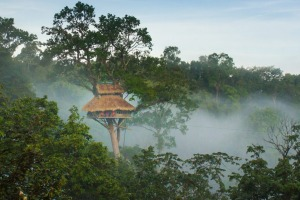 Travellers at The Gibbon Experience in Laos stay in some of the highest tree houses in the world.