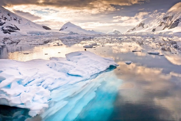 Antarctica: More than 51,000 strong-stomached travellers braved the dreaded Drake Passage crossing to visit Antarctica ...