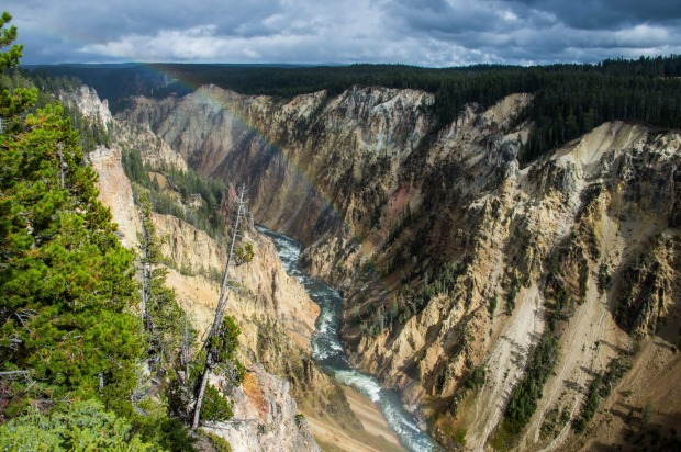 The Grand Canyon of Yellowstone, Wyoming: One of the most photographed corners of America's first National Park, the ...