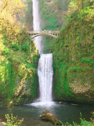 Columbia River Gorge, Washington and Oregon: The Oregon side has viewpoints and waterfall trails (including the iconic ...