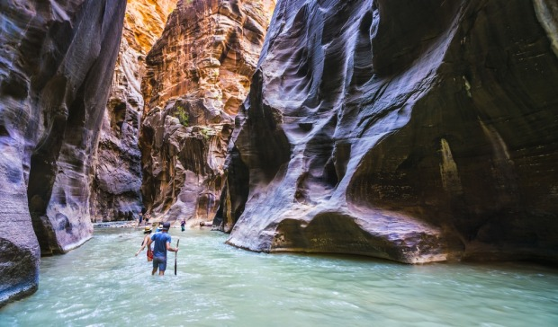 Zion Canyon: The first of these hikes, The Narrows, takes hikers through a water-filled slot canyon.