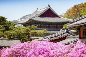 Changdeok royal palace in Seoul.