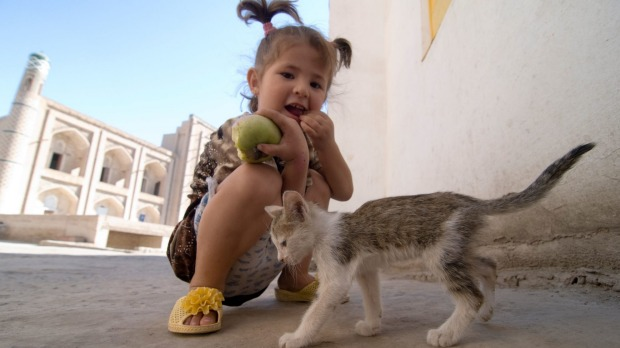 A young girl playing with a kitten in the old city of Khiva, Uzbekistan.
