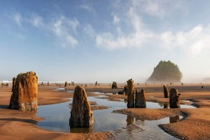 Humans can walk into the past at super low tides, which occur once a year.