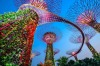 OCBC SKYWAY, SINGAPORE The 50-metre-tall Supertrees on the Singapore waterfront at Marina Bay mightn't be real, but they ...