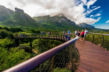 CENTENARY TREE CANOPY WALKWAY, SOUTH AFRICA Designed in 2014 for the centenary of Cape Town's world-famous Kirstenbosch ...