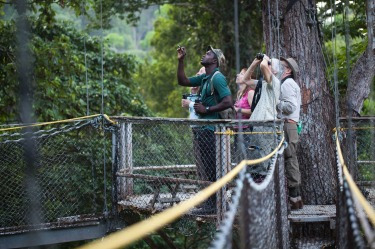 IWOKRAMA CANOPY WALKWAY, GUYANA This walkway in a rainforest nature reserve in central Guyana features a series of ...