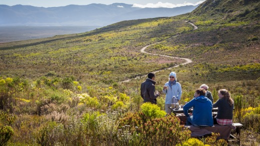 Grootbos is the most diverse flower kingdom on the planet.