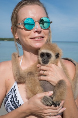 Apes such as this baby gibbon may carry at least 75 unique viruses that could transcend the species barrier.