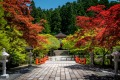 Colourful serene nature at Mount Koya, Japan.