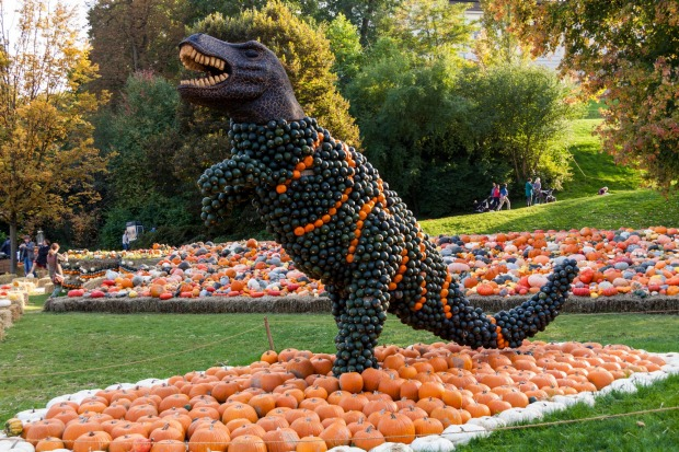Ludwigsburg Pumpkin Festival, Germany: The town of Ludwigsburg is so obsessed with pumpkins that its festival ...