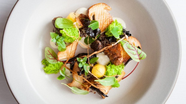 """""""The Forest"""" at In Situ, San Francisco – a quinoa risotto covered with a tangle of leaves, mushrooms, flowers and twigs."""