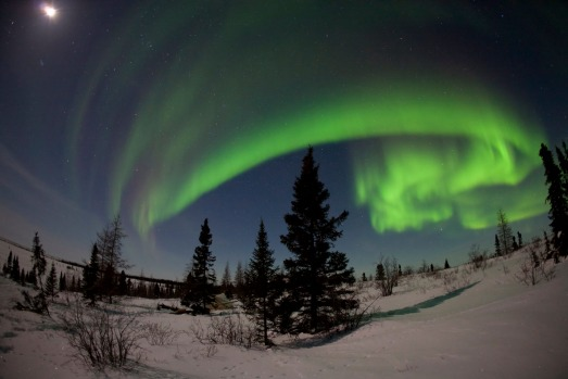 SEE THE NORTHERN LIGHTS: Northern Manitoba is a mecca for the aurora borealis; Churchill alone often records around 300 ...
