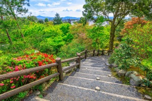 Garden path of a hundred flowers with view of Arashiyama city, Kyoto, Japan.