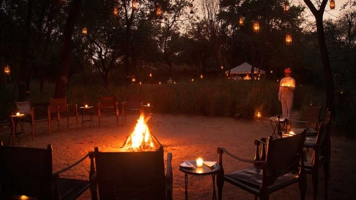 Sujan Sher Bagh is an Africa-like camp comprised of 12 luxurious tents spread out on the fringe of the national park.