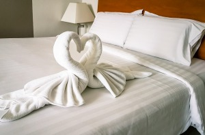 Intrusive and creepy? Swans shaped out of towels.