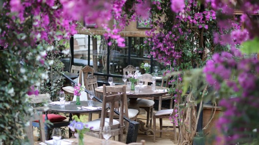 Flowers and bowers: lunch surrounded by scented plants, shrubs and cut flowers.