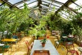 The Petersham Nurseries Cafe, London. Expect to pick up on some gardening advice.