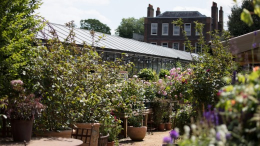 Bygone era: Petersham Nurseries Cafe is located within the grounds of Petersham House, a restored mansion.