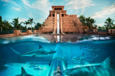 AQUAVENTURE, BAHAMAS Some 20 million gallons of water flow through this attraction, which provides 20 swimming areas and ...