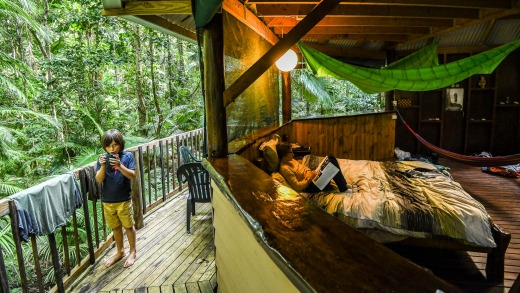 Jungle Tree house in the Daintree Rain Forest.