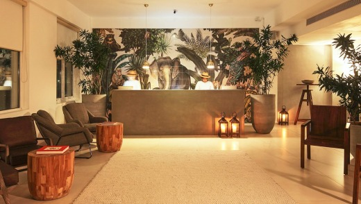 Jungle themed interiors: Dwell hotel.