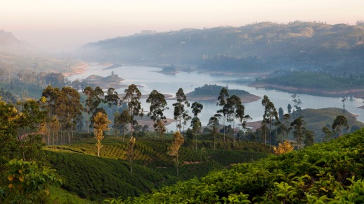 Sri Lanka: Why this is Lonely Planet's top destination for 2019