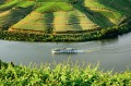 A Scenic Azure cruise in the  Douro Valley, Portugal.