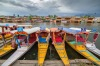 Dal, India: Colourful houseboats dot the shores, the snow-topped Pir Panjal mountains rise behind, and plenty of ...