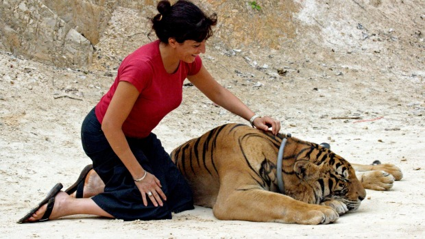 Seven animal experiences tourists should never do