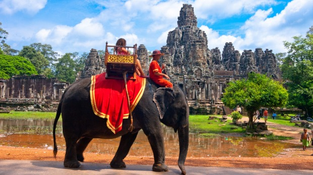 A petition to ban elephant rides at Angkor Wat has taken off since the death of Sambo.