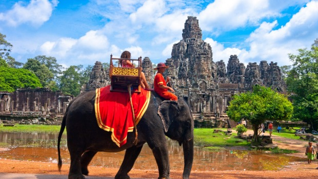 Elderly elephant collapses and dies at Angkor Wat after giving rides