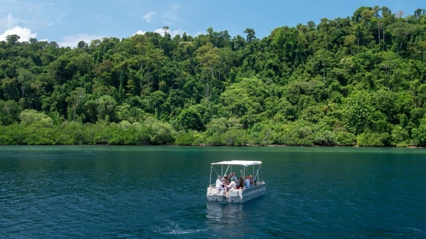 Glass Bottom Boat tour at Roon Island, West Papua.