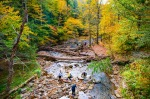 Kaaterskill Falls: Greene County, Catskills: The Brooklyn of the Mountains German and Swiss immigrants settled here in ...